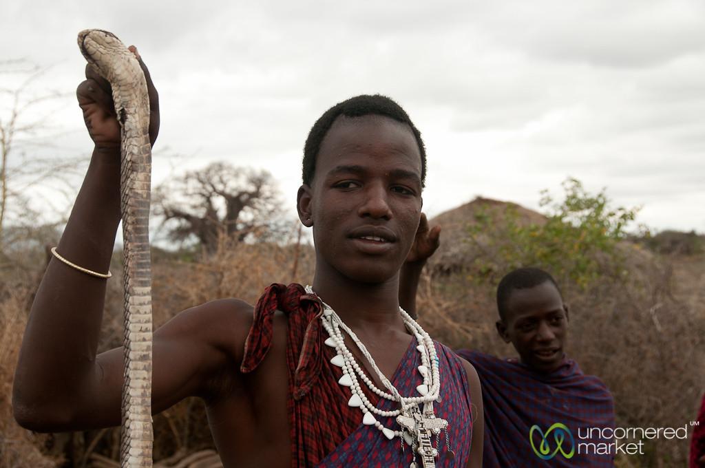 Masai Man Shows Off Egyptian Cobra - Lake Manyara, Tanzania