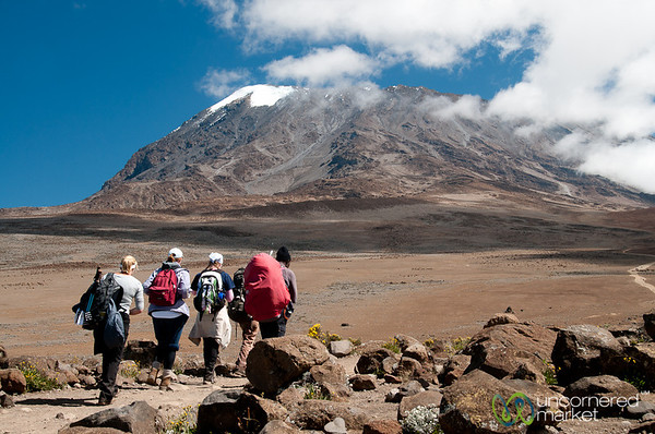 Getting Closer to the Top - Mt. Kilimanjaro, Tanzania