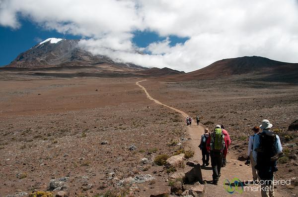 Long Path to Uhuru Peak - Mt. Kilimanjaro, Tanzania
