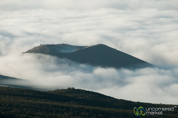 Hill in the Clouds - Mt. Kilimanjaro, Tanzania