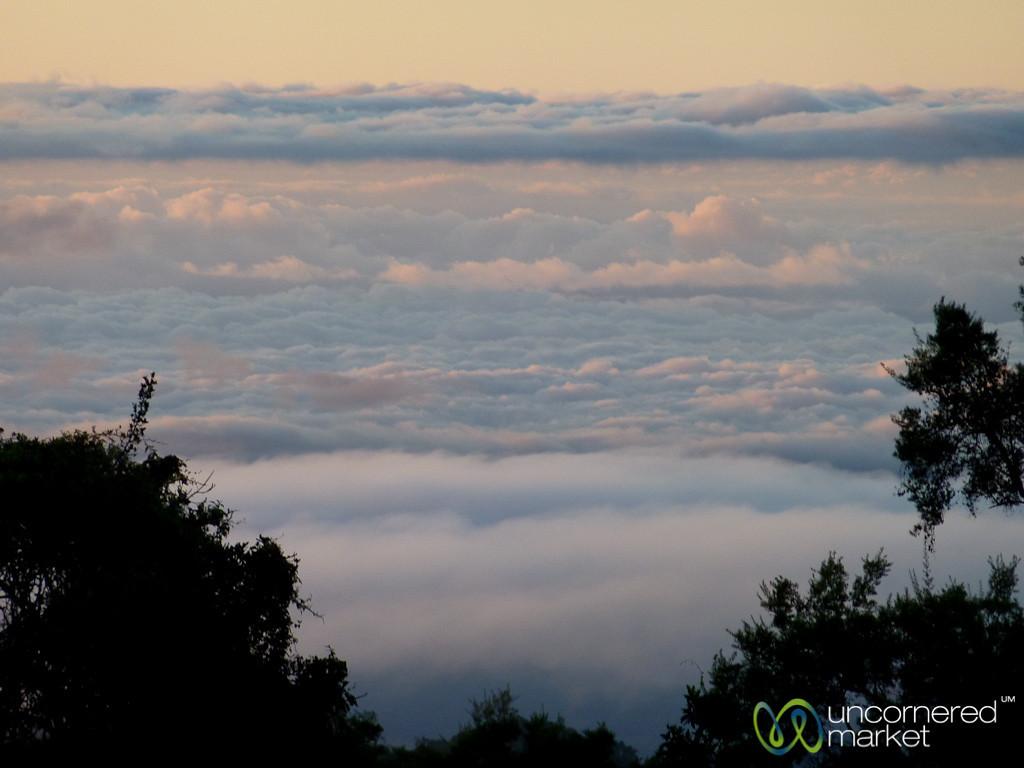 Morning Clouds at Mandara Huts - Mt. Kilimanjaro, Tanzania