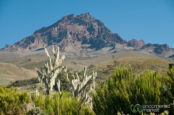 Mawenzi Peak at Dawn - Mt. Kilimanjaro, Tanzania