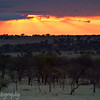 "Sunset in the <a target=""NEWWIN"" href=""http://en.wikipedia.org/wiki/Serengeti"">Serengeti</a>, Tanzania"