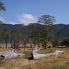 Ngorogoro Crater by Shareen Edwards