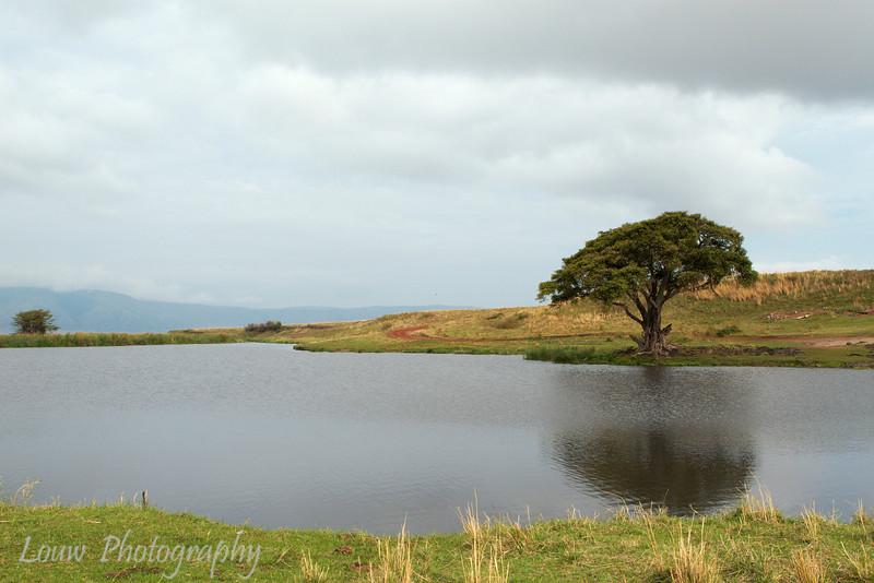 """<a target=""""NEWWIN"""" href=""""http://en.wikipedia.org/wiki/Ngorongoro"""">Ngorongoro Crater</a>, Tanzania"""