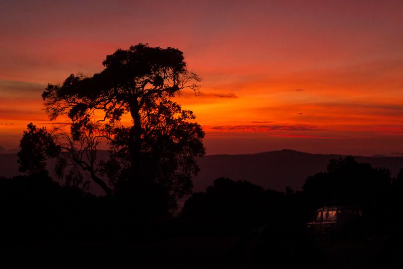 Sunrise safari at the Ngorongoro Crater
