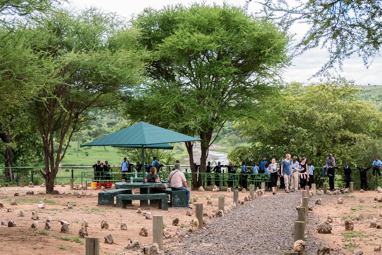 On safari in Serengeti National Park