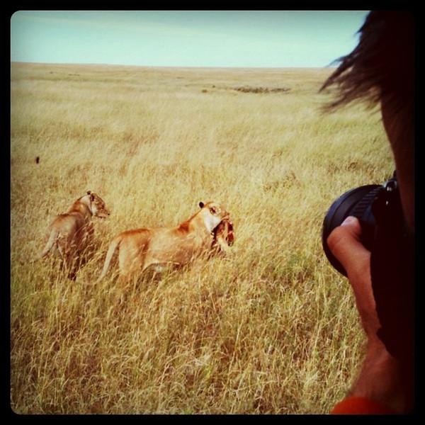 Dan photographing lions with a kill - Serengeti, Tanzania