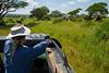 Elephants, Tarangire National Park, Tanzania, Africa.  February 2016