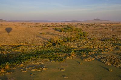 Serengeti National Park, Tanzania Early morning on the Serengeti in Tanzania.