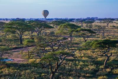 Serengeti National Park, Tanzania Early morning hot air balloon flight over the Serengeti in Tanzania.