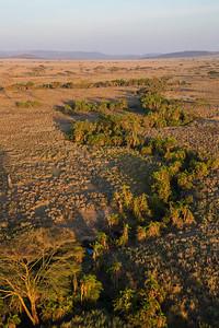 Serengeti National Park, Tanzania Just after sunrise on the Serengeti in Serengeti National Park.
