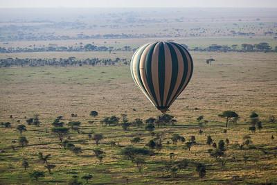 Serengeti National Park, Tanzania Our hot air balloon flies over the Serengeti in Tanzania.