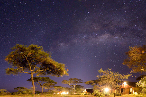 Ndutu Lodge, Ndutu Plains