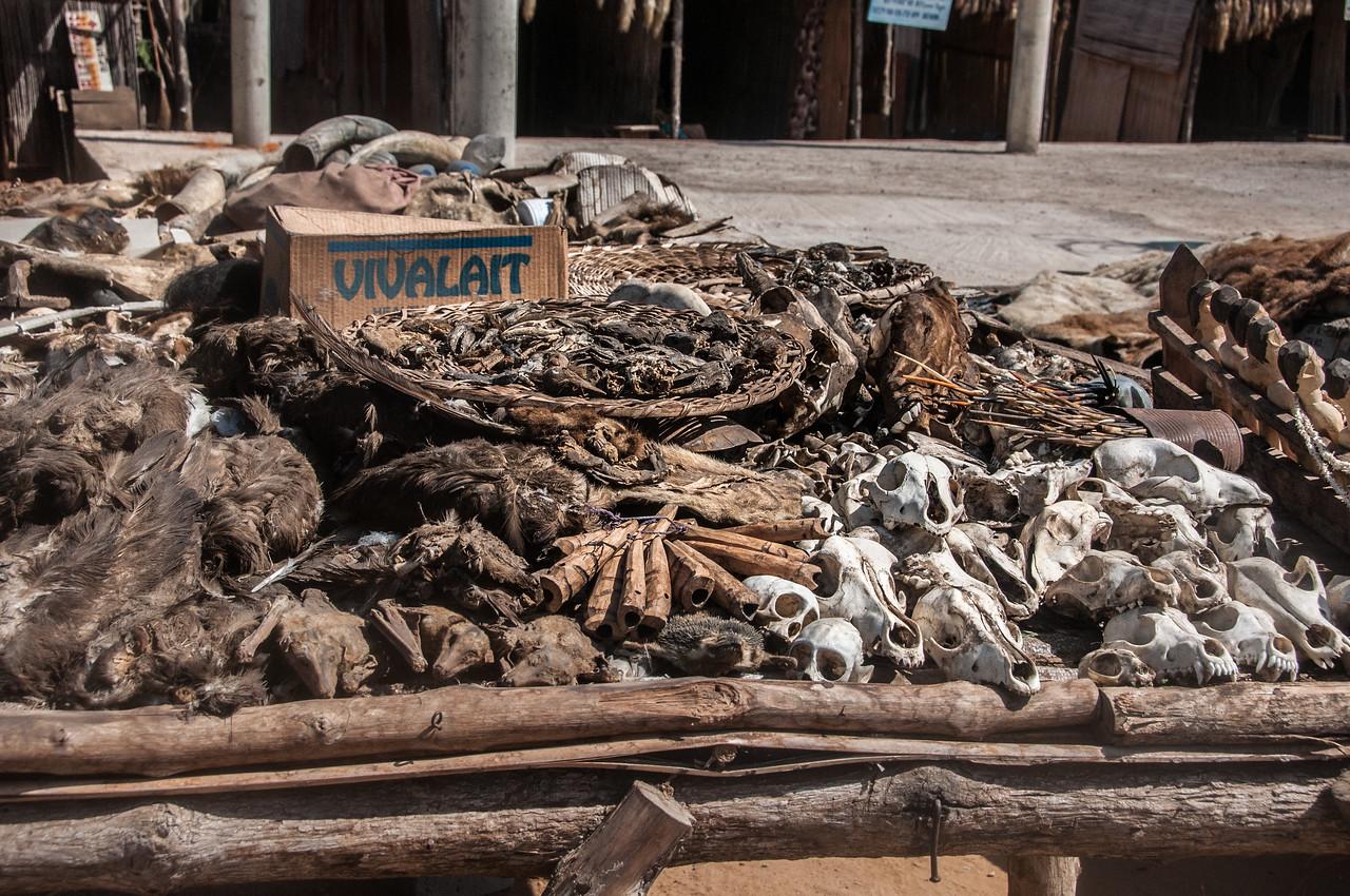 Fetish market in Lome, Togo