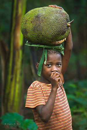 Young boy carrying jack fruit