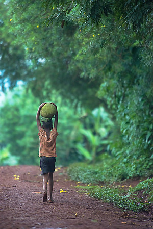 Young boy carrying jack fruit. Kyabirwa, Jinja District, Uganda