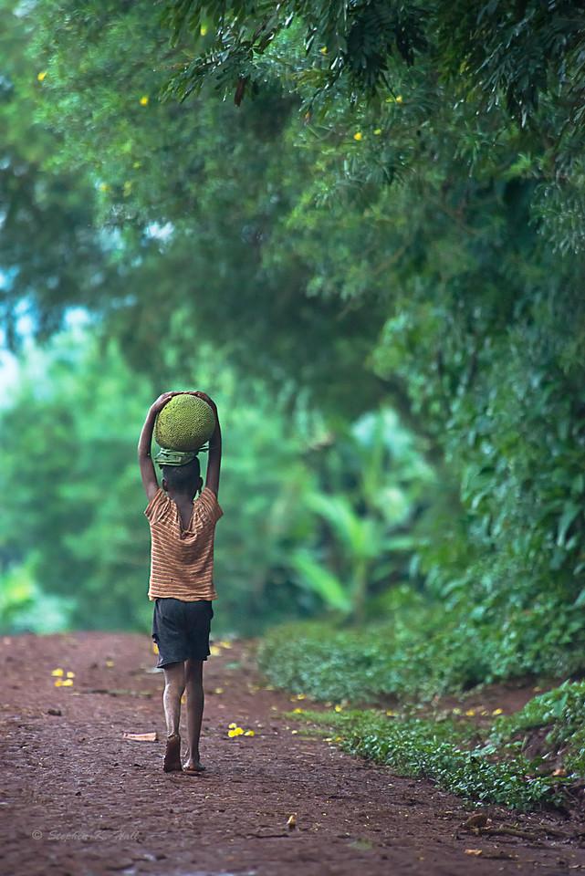 Young boy carrying jack fruit. Kyabirwa, Jinja District, Uganda