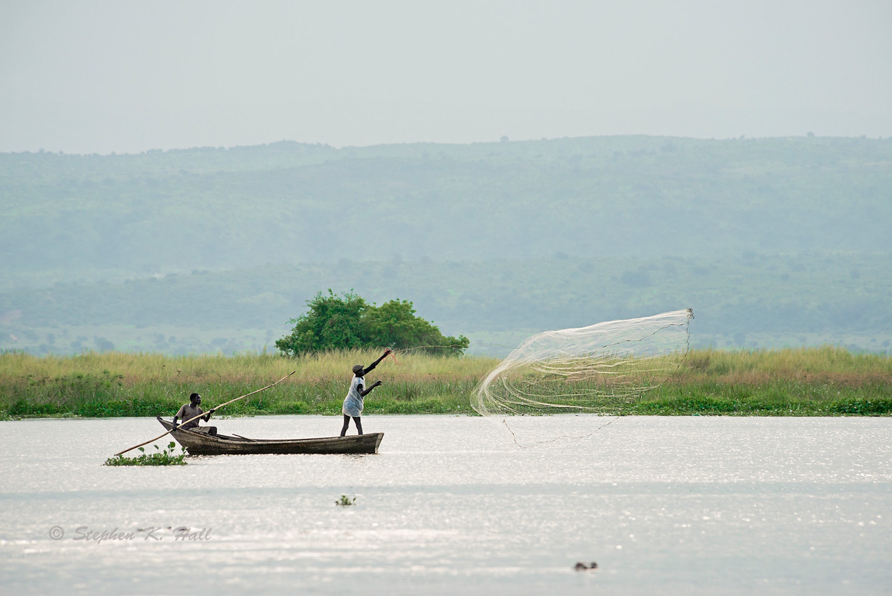Fishermen casting their net on the Victorian Nile, western Uganda