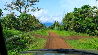 Blick nach Osten über den Graben hinweg zum Ruwenzori, Uganda