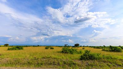 Blick über die Savanne nach Norden auf die Rwenzori-Berge, QENP, Uganda