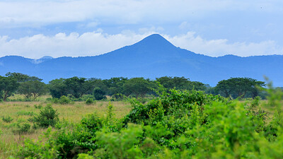 Kasenyi Plains, QENP, Uganda
