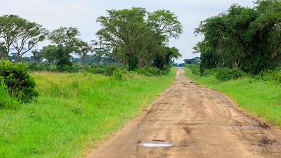 Dirt track, Kasenyi Plains, QENP, Uganda