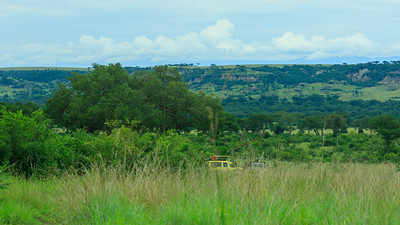 Ishasha, QENP, Uganda
