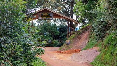 Entrance to the Bwindi Impenetrable NP, Uganda