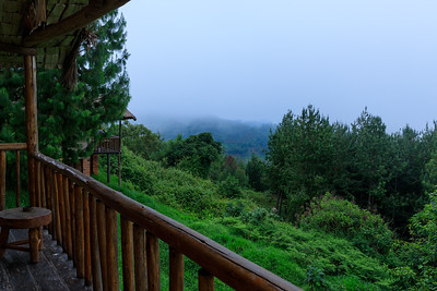 Low clouds in the morning of our Gorilla-Trekking, Bwindi Impenetrable NP, Uganda