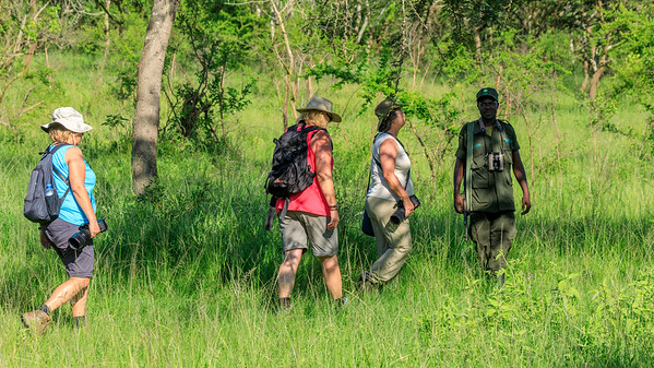 Game walk in the Lake Mburo NP, Uganda
