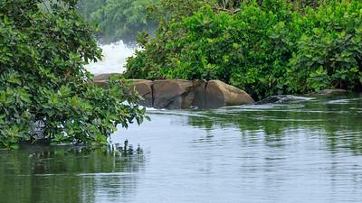 Busowoko Falls, Victoria Nile, Uganda
