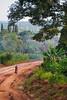Village road. Budondo, Uganda