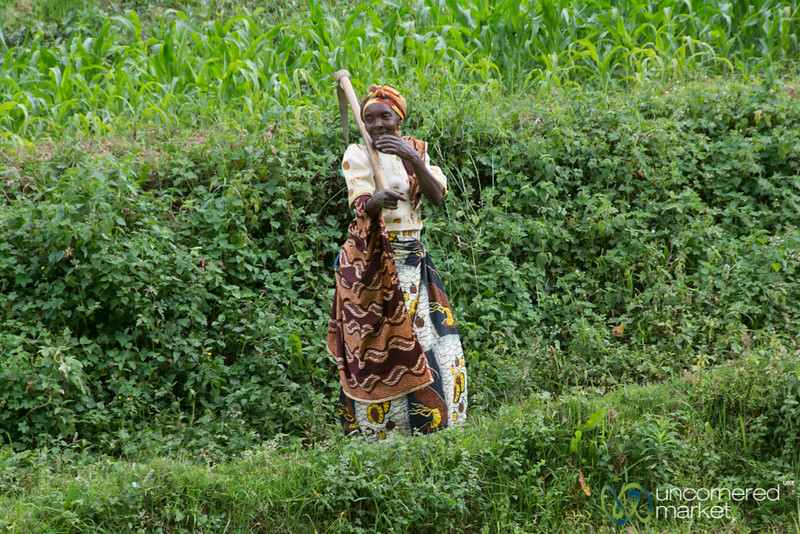 Ugandan Woman in the Fields - Bwindi, Uganda