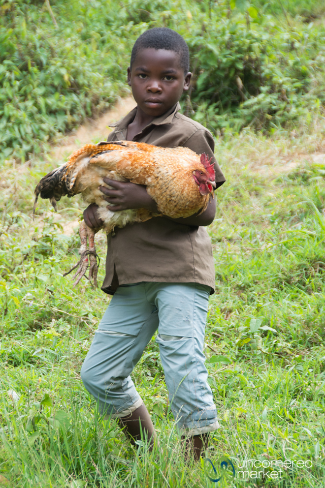 Ugandan Boy with his Rooster