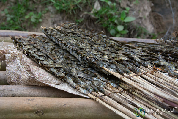 Dried Fish on a Stick - Lake Bunyonyi Market, Uganda