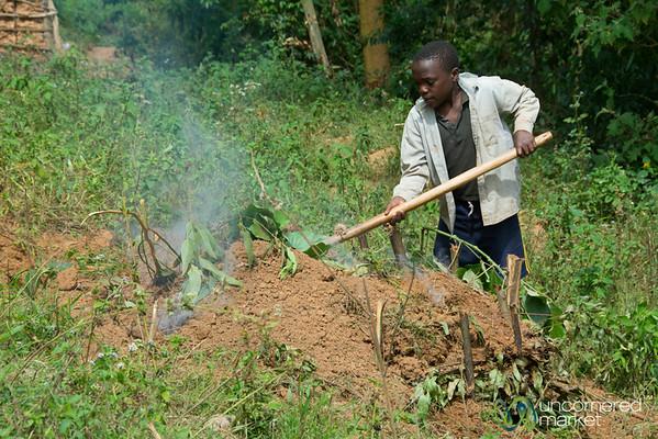 Making Charcoal at Village near Lake Bunyonyi, Uganda