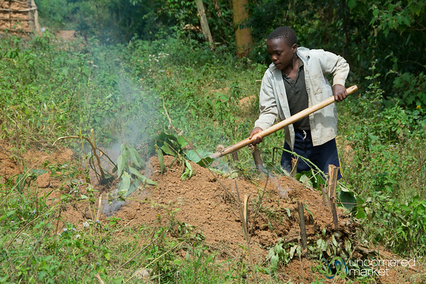 Making Charcoal at Village near Lake Bunyonyi, Uganda