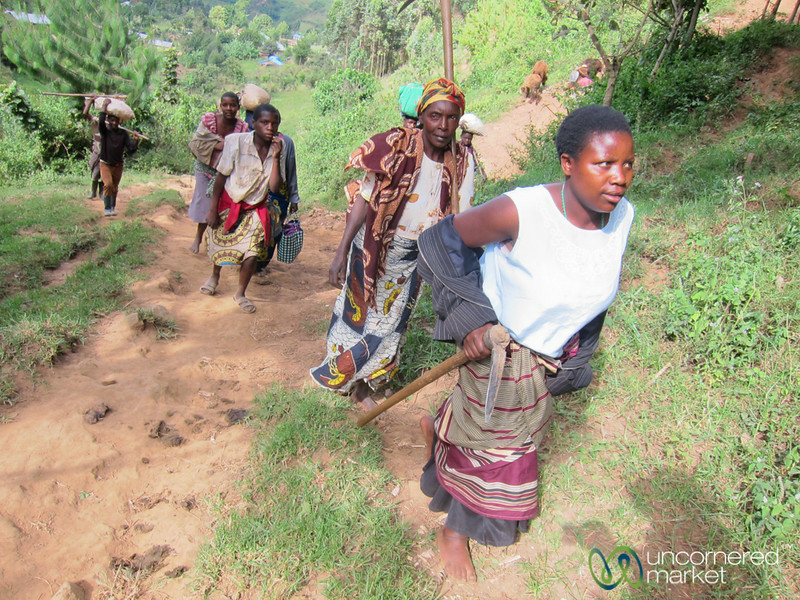 Farmers Walk Up to the Fields - Bwindi, Uganda