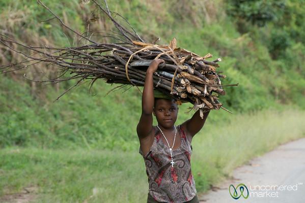 A Ugandan Woman Carries Wood for Cooking - Kalinzu Forest Reserve, Uganda