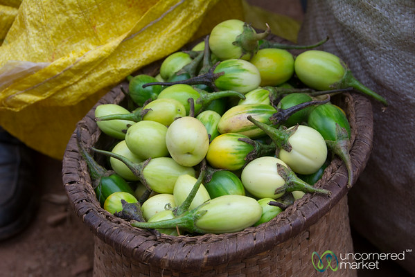 Basket of Green Eggplant / Bitter Tomato - Lake Bunyonyi, Uganda