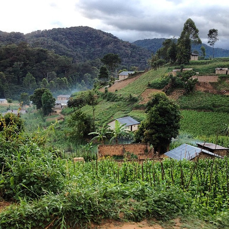Uganda, villages in the mist. Early morning lifts en route to Bwindi Impenetrable National Park. The landscape in southwestern Uganda, equal parts beautiful and surprising. via Instagram http://ift.tt/1iteFxZ