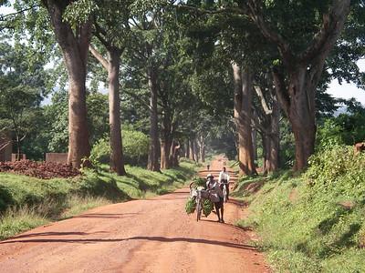 cyclists, uganda