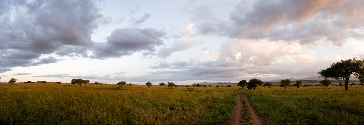 You gotta love those African skies...<br /> <br /> This is a 9-shot panorama stitched together in CS3.<br /> <br /> Location: Kidepo Valley National Park, Uganda<br /> <br /> Lens used: 24-105mm f4.0 IS