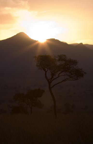 The morning sun shines out over the valley.<br /> <br /> Location: Kidepo Valley National Park, Uganda<br /> <br /> Lens used: 100-400mm f4.5-5.6 IS