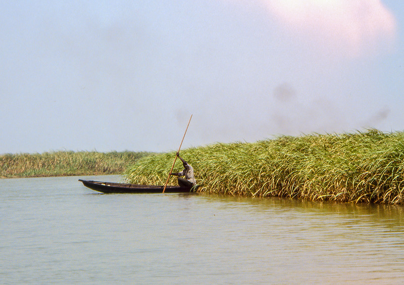 Another fisherman in the reeds. Smoke in the background indicates a village on an island of Lake Chad.
