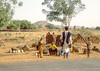 Just across the border In Niger our bus stops at a gathering.