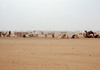 Camel market disappearing in the dust.