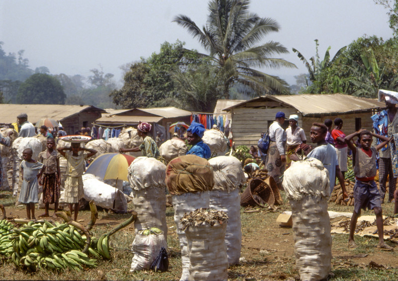 bananas and other goods in market