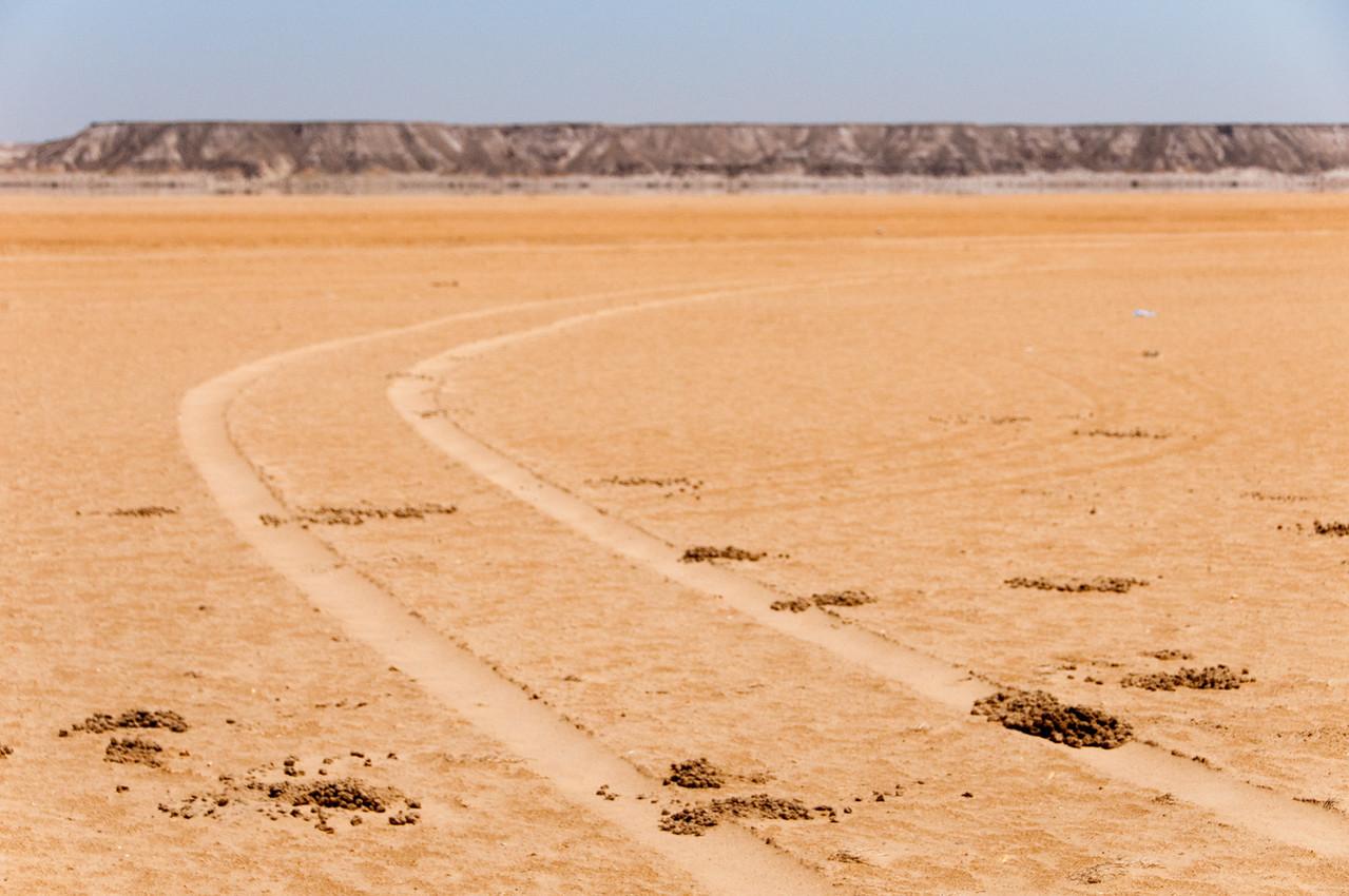 Wheel marks in the desert of Dakhla, Western Sahara